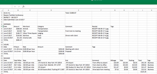 Falcon's Expense Report Template & What Exported Reports Look Like